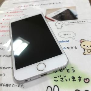 IMG-9495
