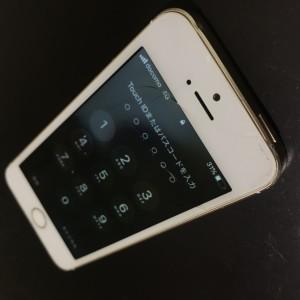 IMG-8280