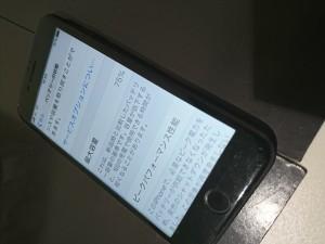 DSC_0100