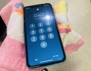 アイフォン11 スマホコーティング